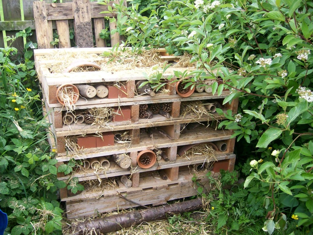 The completed 'Bug Hotel'